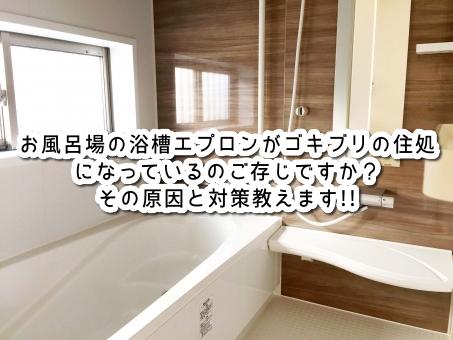 お風呂場の浴槽エプロンがゴキブリの住処になっているのご存じですか?その原因と対策教えます!!